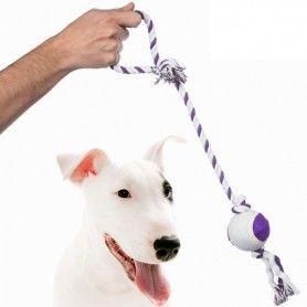 Corde avec Balle pour Chien Pet Prior