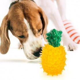 Juguete para Perros Fruits
