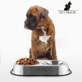 Mangeoire-Abreuvoir pour Animaux de Compagnie Pet Prior