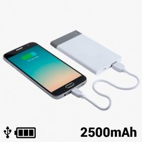 Power Bank avec USB Amovible 2500 mAh 8 GB 145242