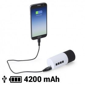 Enceinte Bluetooth Power Bank 4200 mAh 3W 145161
