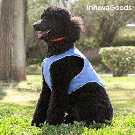 InnovaGoods Refreshing Pet Vest for Medium Pets - M